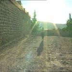k-Akram Kiro Gonglik (Mohnblume)24